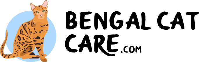 Bengal Cat Care